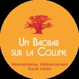 Consultant referencement seo lyon un baobab sur la colline