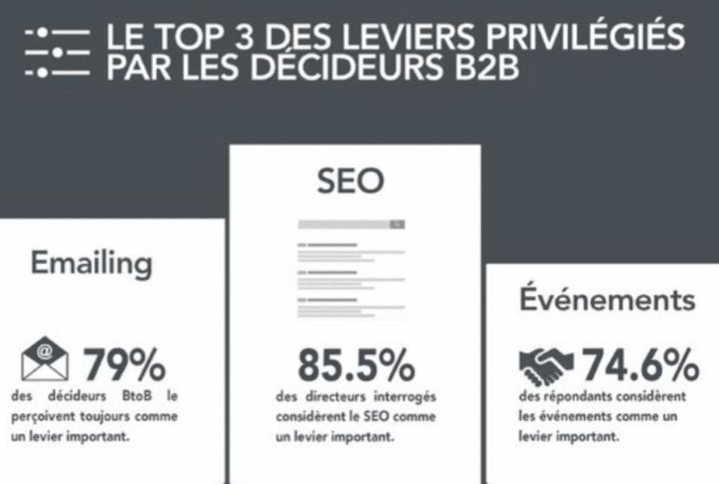 seo-webmarketing-lyon-un-baobab-sur-la-colline