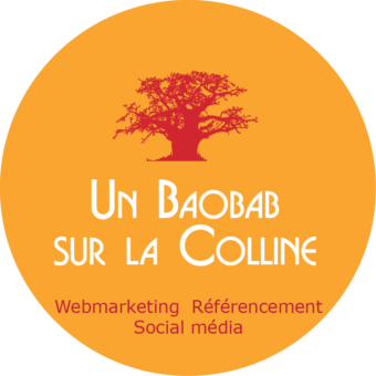 agence webmarketing lyon un baobab sur la colline