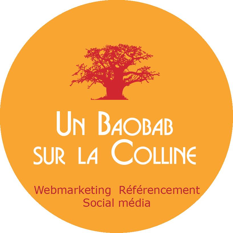 brunelle barillaro consultante formatrice webmarketing lyon un baobab sur la colline