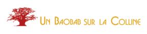 un-baobab-sur-la-colline-agence-webmarketing-referencement-seo-lyon-1-288x68
